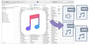Sidify Apple Music Converter 4.0.4 Crack + Torrent Free Download